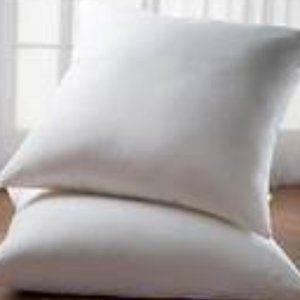 Euro Pillows (Set of 2)
